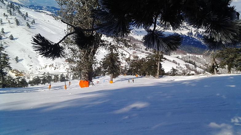 a sunny day, Vasilitsa