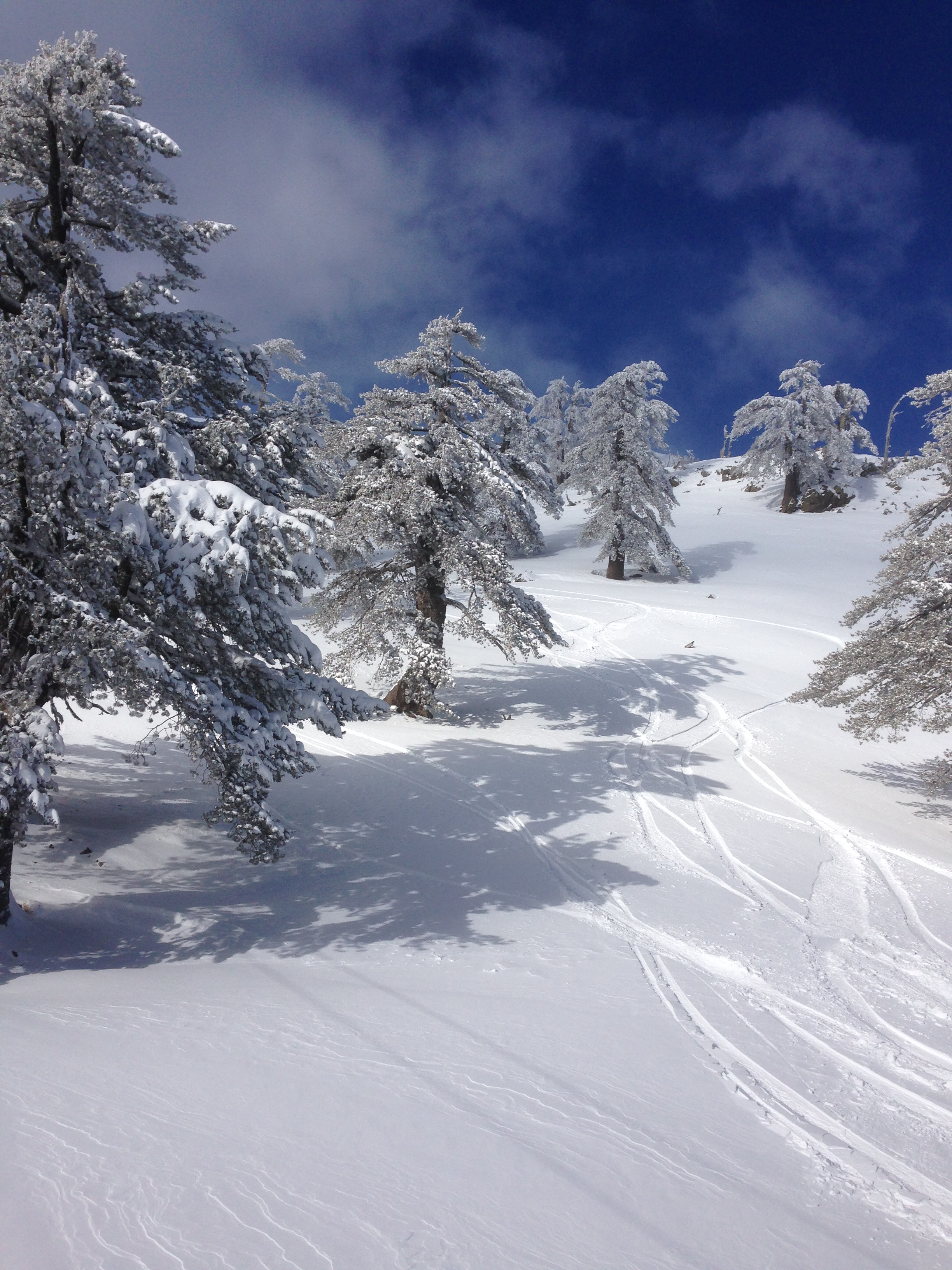 perfect day for snowboard, Vasilitsa