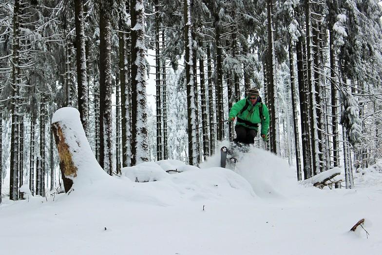 In the woods, Thalfang/Erbeskopf
