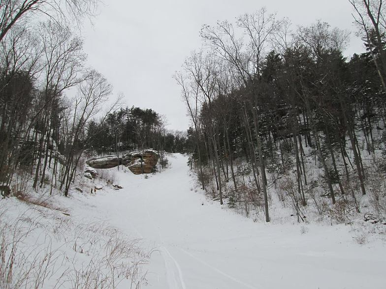 New Run Construction, Bruce Mound