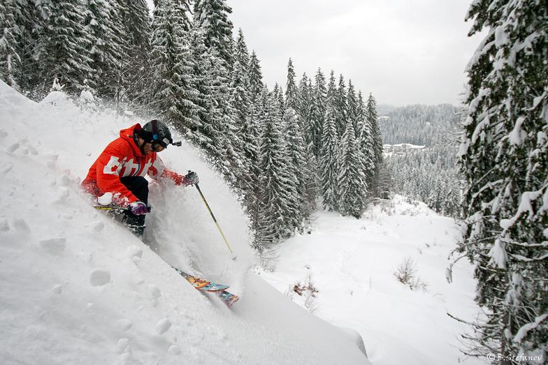Pamporovo winter season 2014-2015