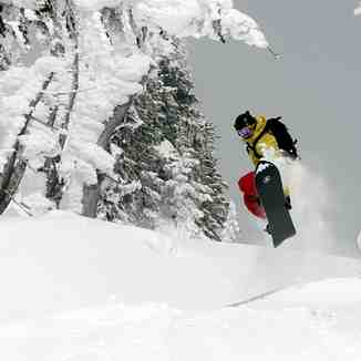 Snowboarder Catching Air, Selkirk Powder