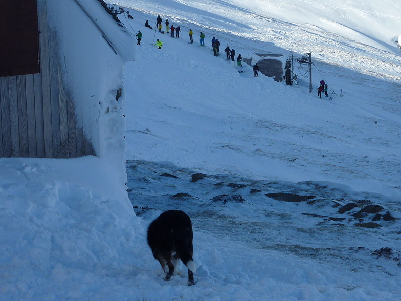 The tow from the Members Hut, Raise (Lake District Ski