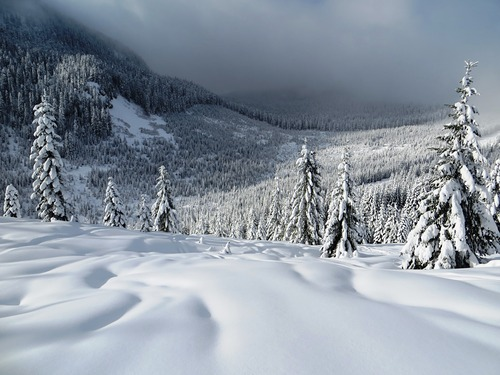 Summit at Snoqualmie Ski Resort by: Vladimir Doronin