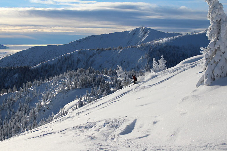 Bluebird Powder, Apex Resort