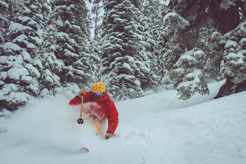 Showdown Ski Area snow