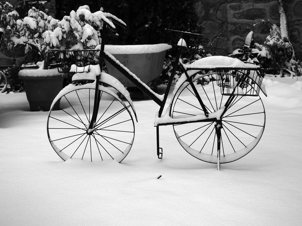 Bicycle, Mt Olympus