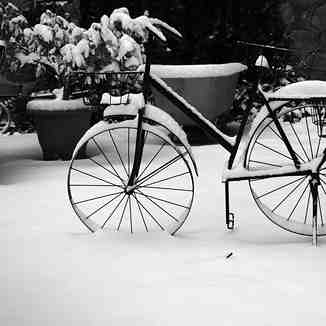 Bicycle, Mt Olympus