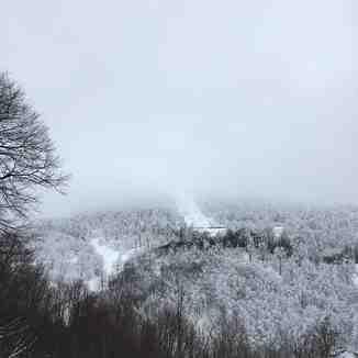 Mist of kartepe