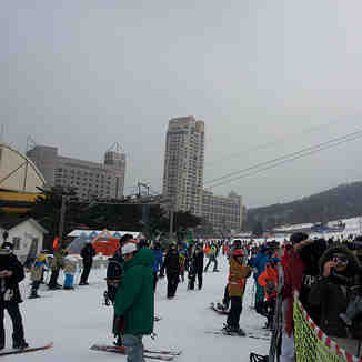 PyeongChang Phoenix Park, Phoenix Park Ski World