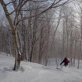 Sous-Bois des légendes, Canada - Quebec