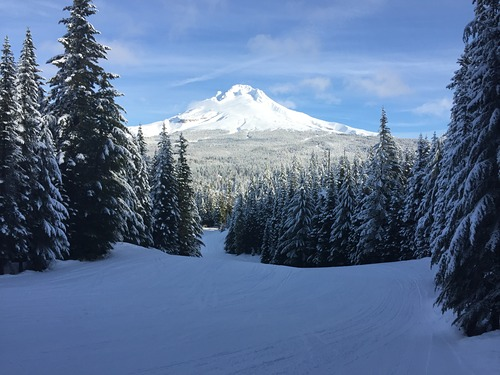 Mt Hood Ski Bowl Ski Resort by: First Tracks