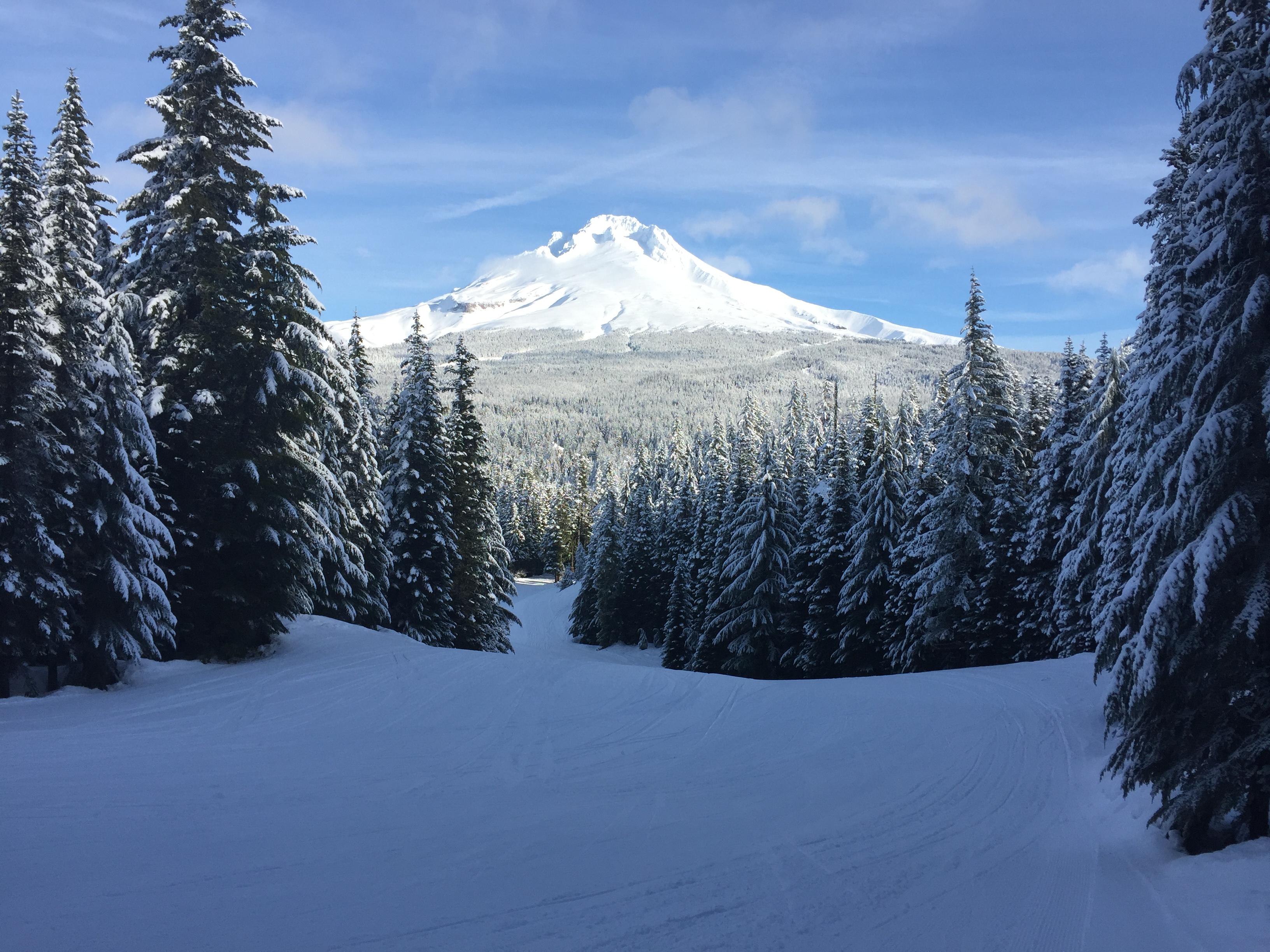 Off Multopor towards Mt. Hood, Mt Hood Ski Bowl