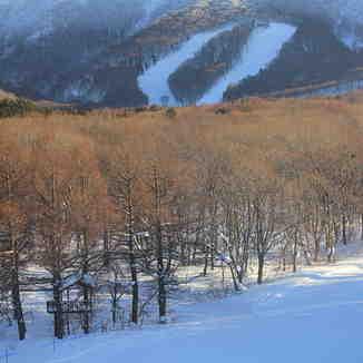 Aomori Spring Resort on Mt Iwake, Aomori Spring (Ajigasawa)