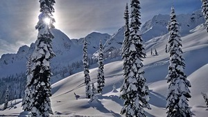 Fresh powder, Island Lake Catskiing photo