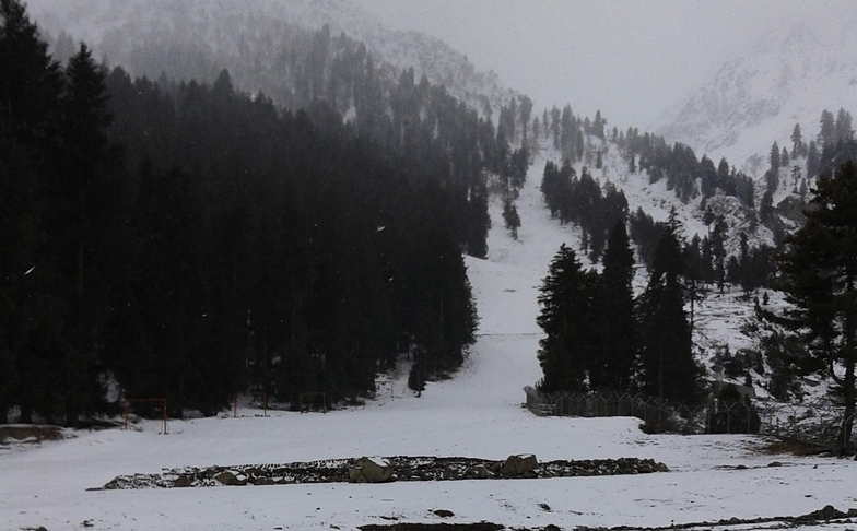 Naltar Valley snow