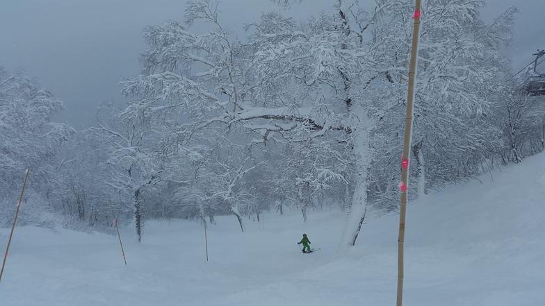 Teine highland, Sapporo Teine