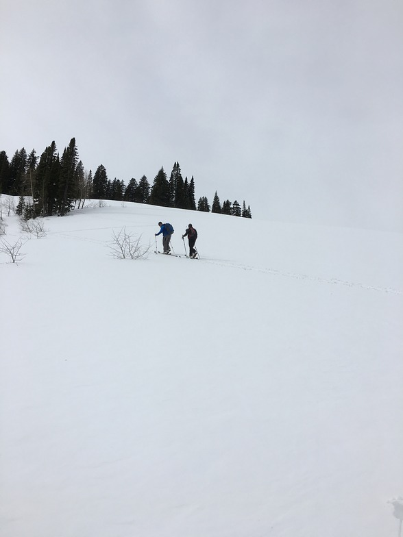 Teton Pass Ski Area