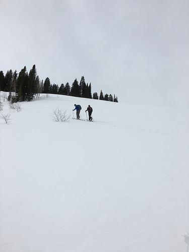 Teton Pass Ski Area Ski Resort by: Penny Pinson
