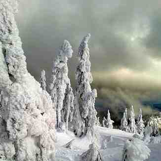 Ghosts in a storm, Cypress Mountain