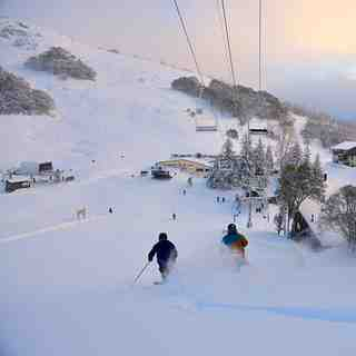 Falls Creek Snow: Falls Creek Aussie Powder