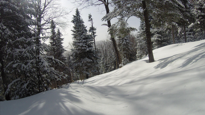 Immaculate powder, Ski La Reserve