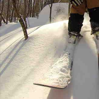 First line, Ski La Reserve