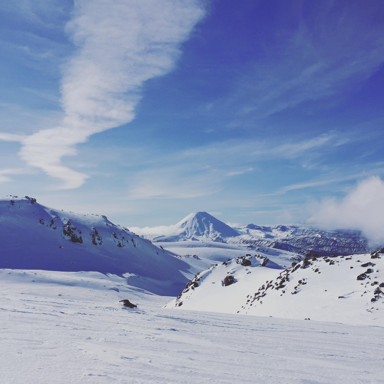 NZ Winter Beauty, Tukino