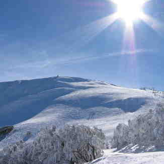 Mt Buller Sunshine, Mount Buller