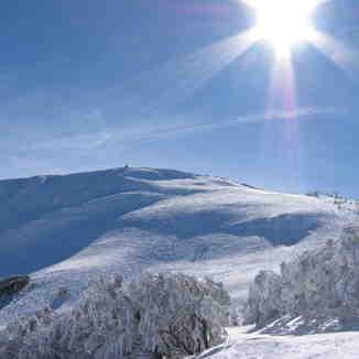Mt Buller Sunshine, Mount Buller