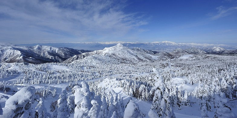 Shiga Kogen-Yokoteyama snow