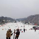Vivaldi Park, South Korea