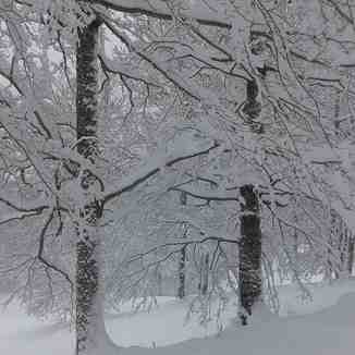 Nordic ski in Candanchu