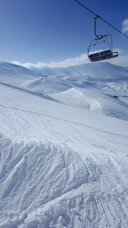 Ski lifts, Cedars