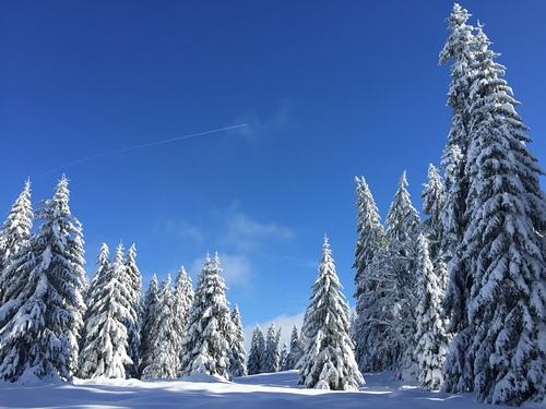 La Dôle Ski Resort by: blacka01