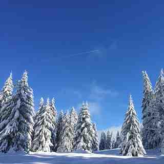 Jura snow, La Dôle