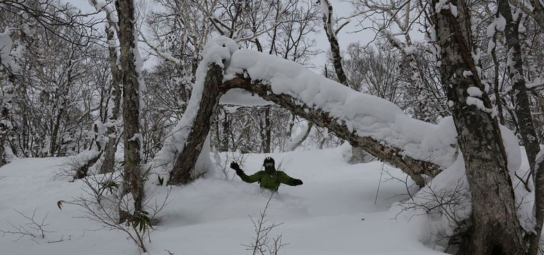 Tree run Rusutsu, Rusutsu Resort