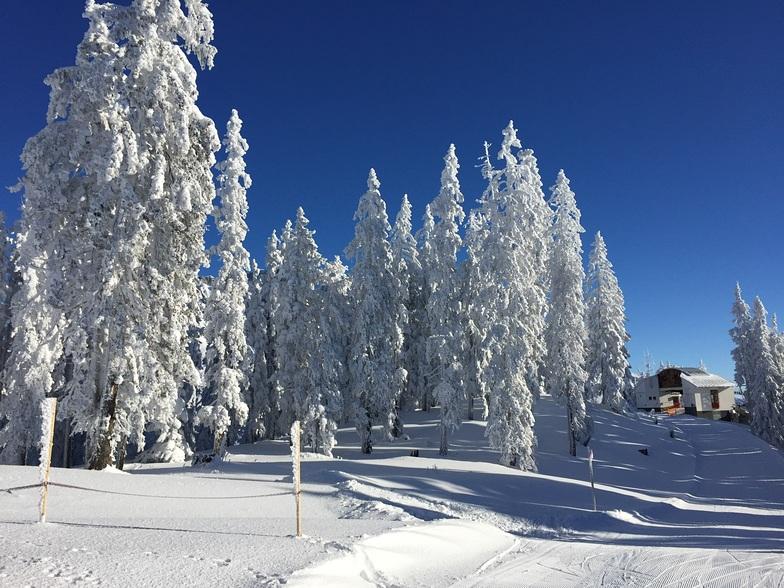 Hochkönig snow