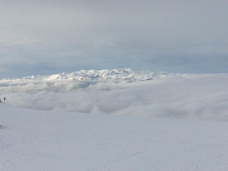 Vakchos, Mount Parnassos