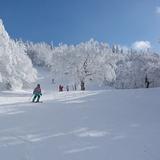 Snow in Mont SUTTON, Canada - Quebec