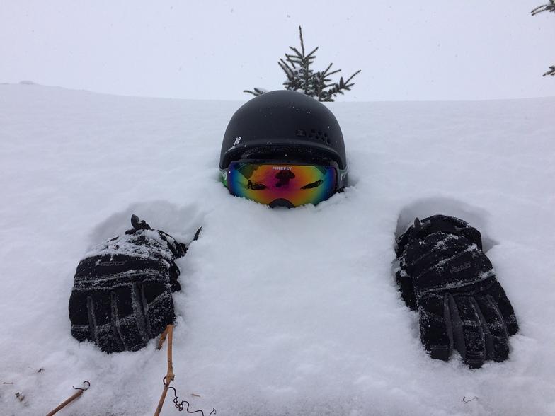 Powder Skiing Fernie