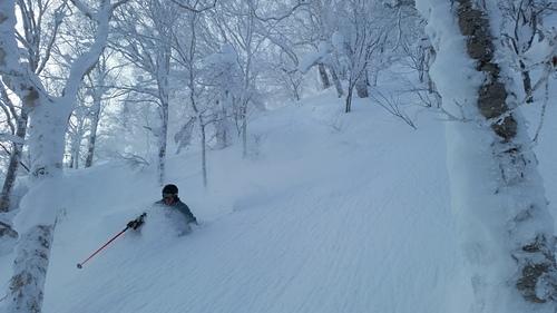 Sapporo Teine Resort Guide