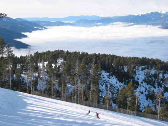 MASELLA and the valley fog