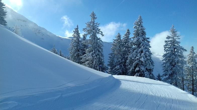 early morning, Alpbachtal