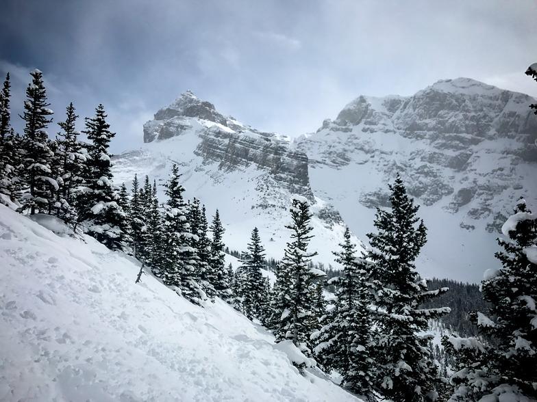 Norquay Snow, Banff Mt Norquay