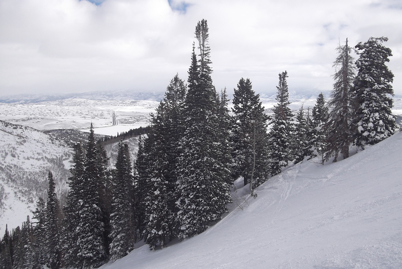 View from the Devil's Friend, The Canyons