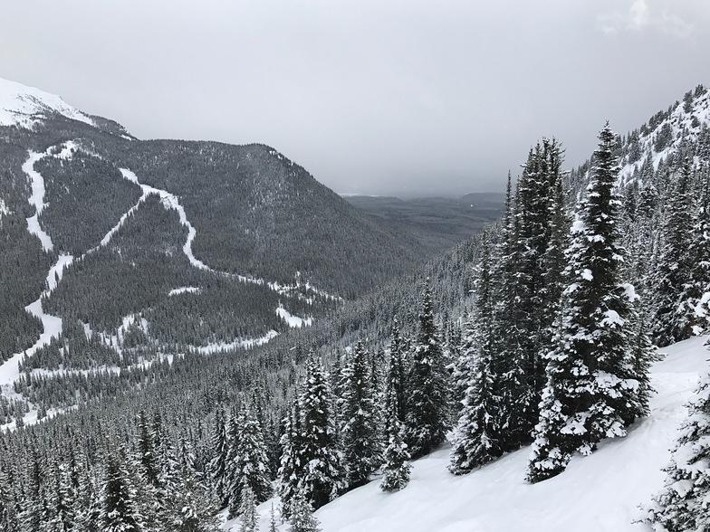 Mt. Norquay, Banff Mt Norquay