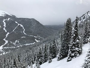 Mt. Norquay, Banff Mt Norquay photo