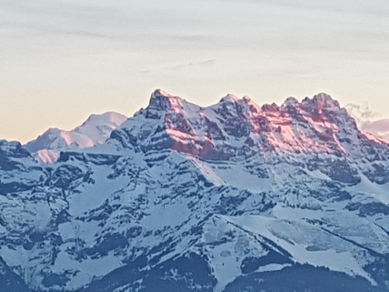 Dents du Midi and Mont Blanc, Leysin
