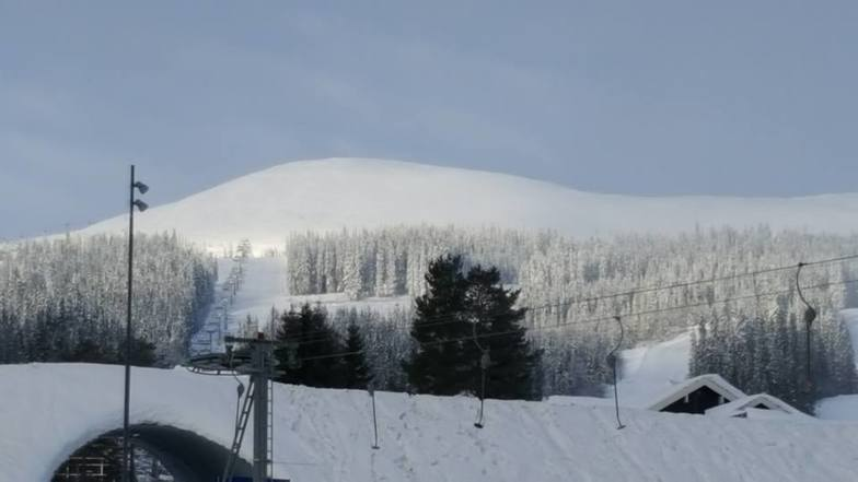 the high point, Trysil
